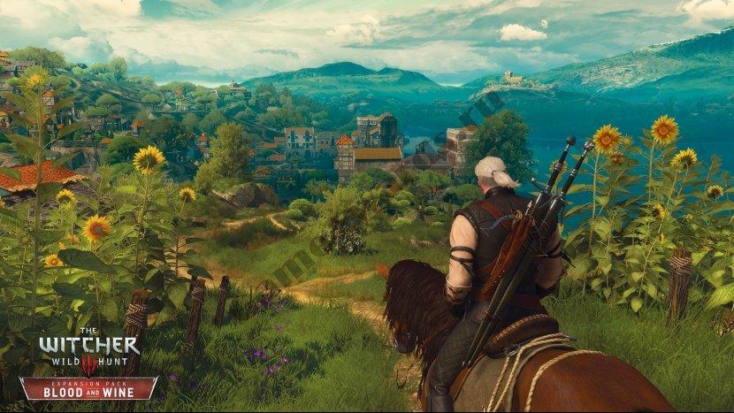 Прохождение всех дополнительных заданий и заказов игры The Witcher 3: Wild Hunt – Blood and Wine