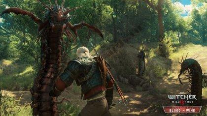 Вся гроссмейстерская броня и где её найти – Гайд по The Witcher 3: Wild Hunt – Blood and Wine