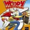 игра от Eko Software - Woody Woodpecker: Escape from Buzz Buzzard Park (топ: 0.9k)