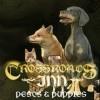 Crossroads Inn - Pests & Puppies