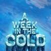 Новые игры Атмосфера на ПК и консоли - A Week In The Cold
