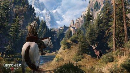 Карта и животный мир The Witcher 3: Wild Hunt