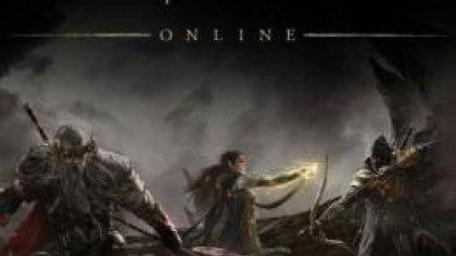 Инфографика беты The Elder Scrolls Online