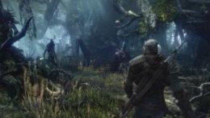 The Witcher 3 - не более 30 кадров в секунду