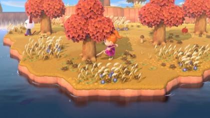 Animal Crossing: New Horizons позволяет иметь только один остров на консоль Switch