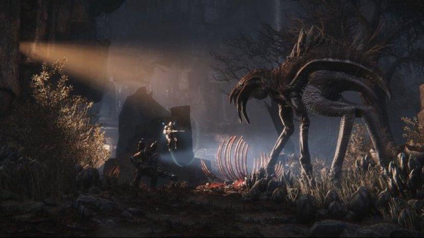 Evolve пошла в печать
