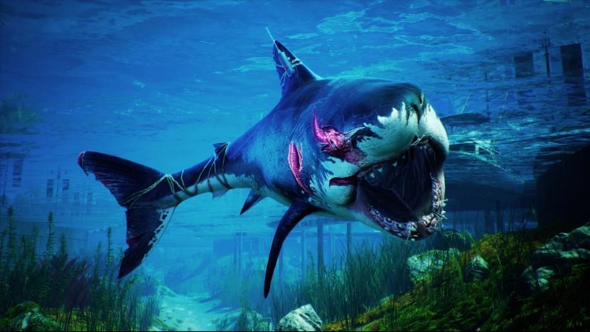Разработчик «симулятора акулы» Maneater прокоментировал скорость SSD в Xbox Series X