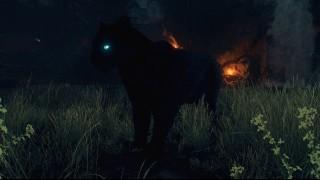 питомцы Far Cry 6