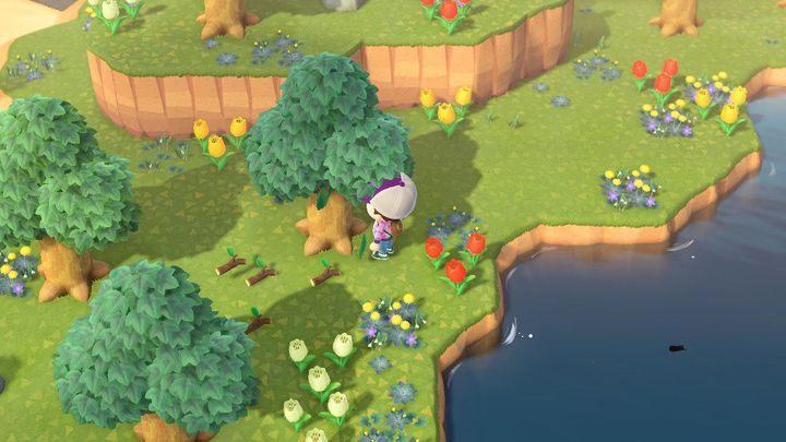 советы по прохождению Animal Crossing: New Horizons