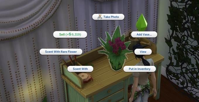 гайд по прохождению The Sims 4 Seasons