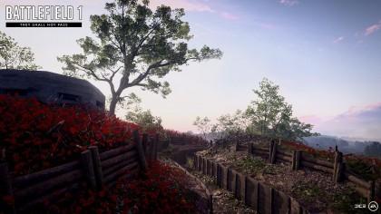 Battlefield 1 – Первый взгляд на карту дополнения «Они не пройдут»