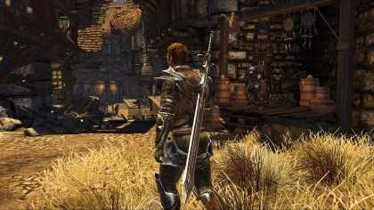 Divinity II: The Dragon Knight Saga игра