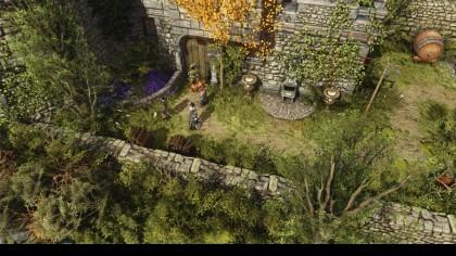 Divinity: Original Sin II игра