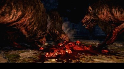 Dragon's Dogma: Dark Arisen игра