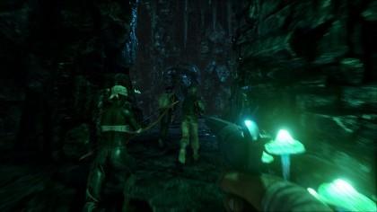игра ARK: Survival Evolved