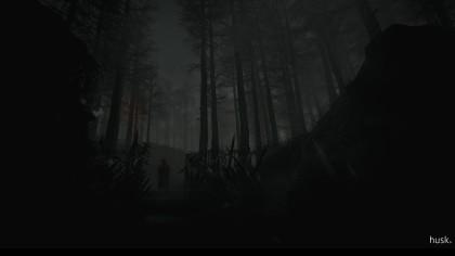 Скриншоты Husk