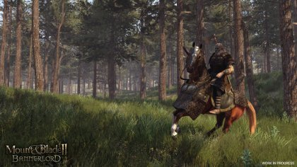 Превью Mount & Blade 2: Bannerlord