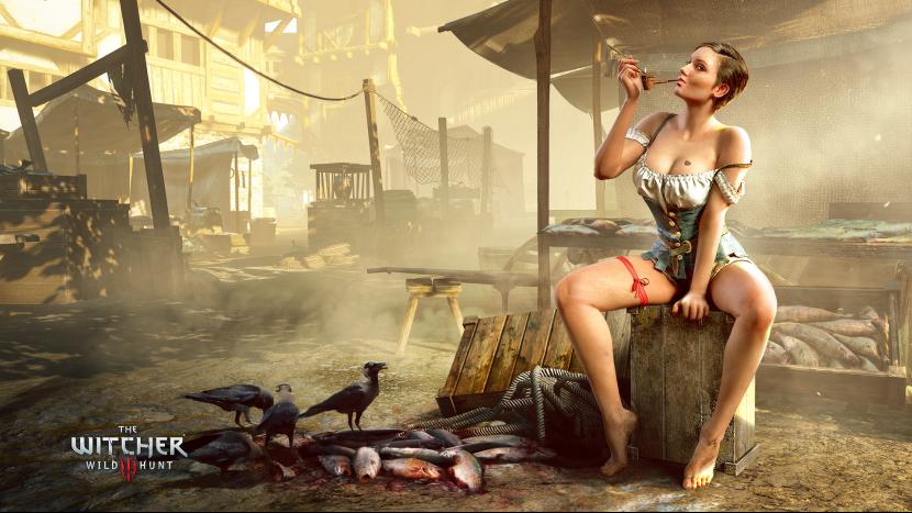 Всё-таки «Кровь и вино» станет последним дополнением для The Witcher: Wild Hunt